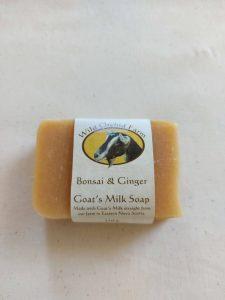 Bonsai & Ginger Goat's Milk Soap