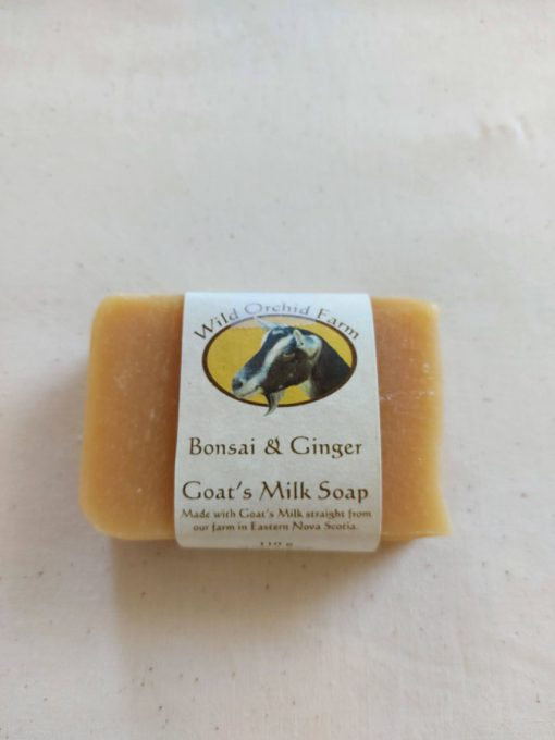 Bonsai & Ginger Goat's Milk Soap