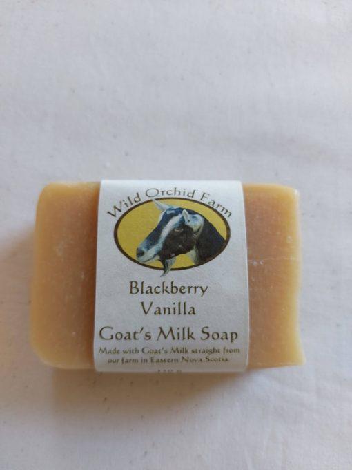 Blackberry Vanilla Goat's Milk Soap