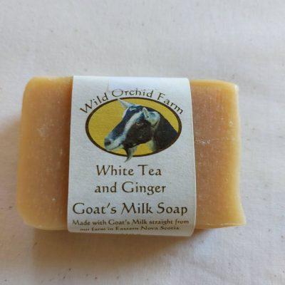 White Tea & Ginger Goat's MIlk Soap