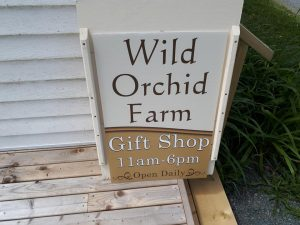 Wild Orchid Farm - Our Shop
